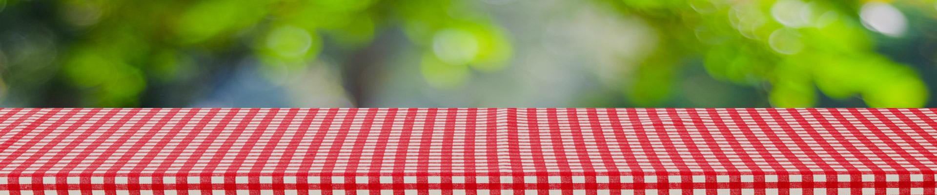 header-company-picnics-02